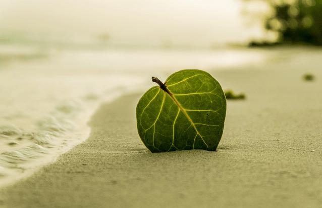 Одиночество с пользой для себя